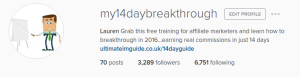 The number of followers at the end of the 6 weeks