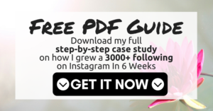 Free case study - how I grew a 3000 following on instagram in 6 weeks