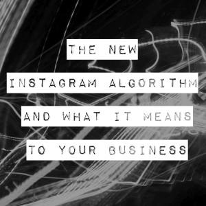 new instagram algorithm